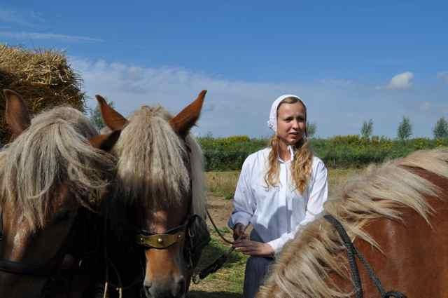 paarden meisje